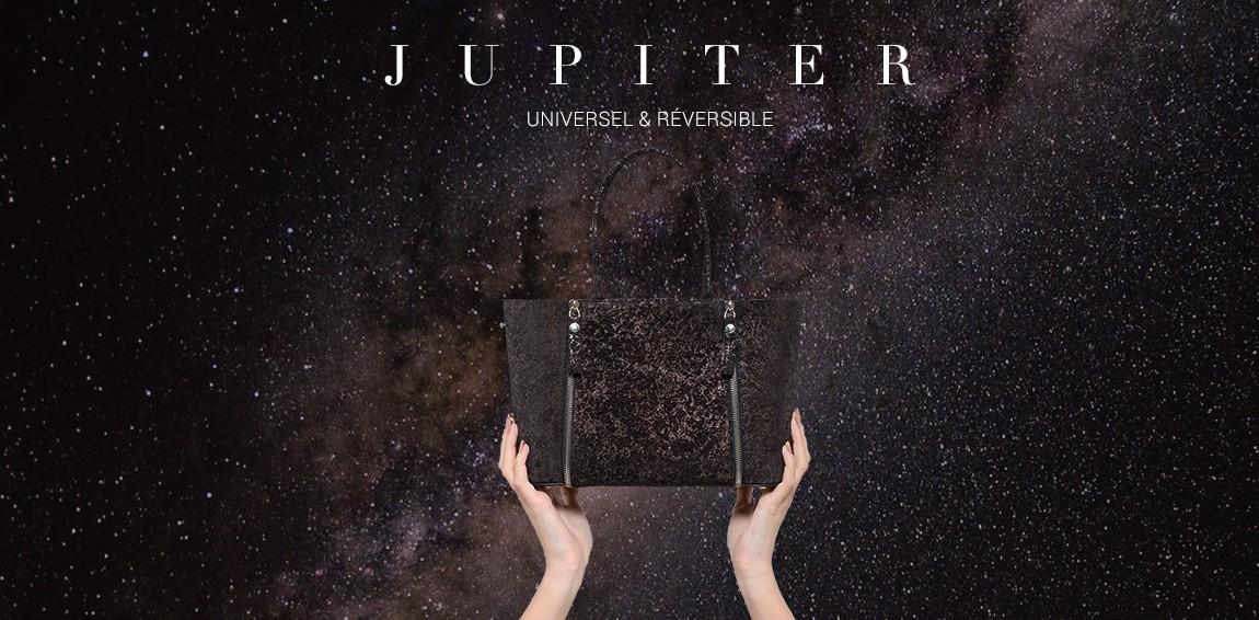 Le S Small Tote Jupiter